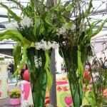 Floral Arrangements of Keukenhof Gardens