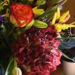 Tour of Stems Flower Shop, Evergreen, Colorado