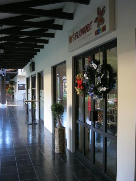Art Flower Shop, Costa Rica