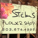 Tour of Stems Flower Shop, Evergreen Colorado
