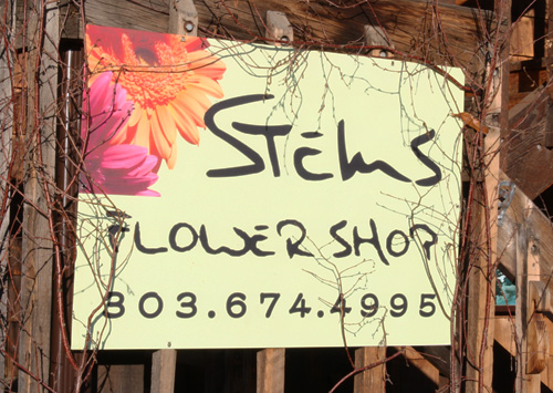 Tour of Stems Flower Shop, Evergreen Colorado