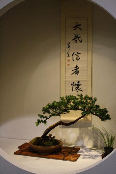 Ikebana & Bonsai of Philadelphia Flower Show