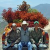 Protea farmers in California