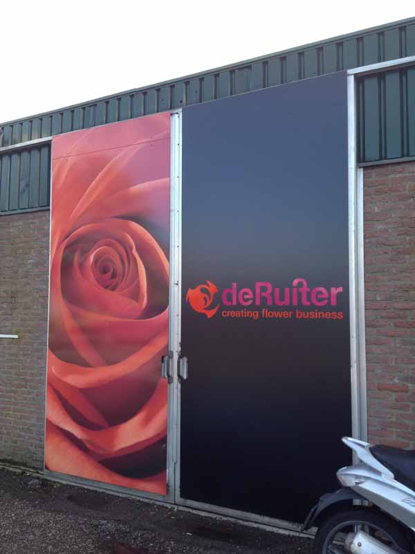 A visit to the Rose Breeder – De Ruiter