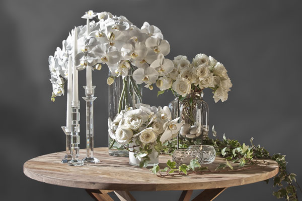 white garden roses and phalaenopsis