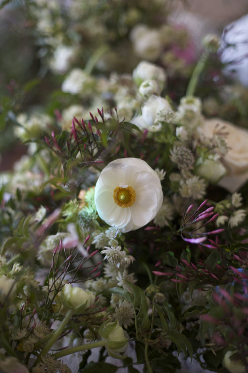 white ranunculus and jasmine