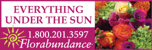 Everything Under the Sun - Florabundance