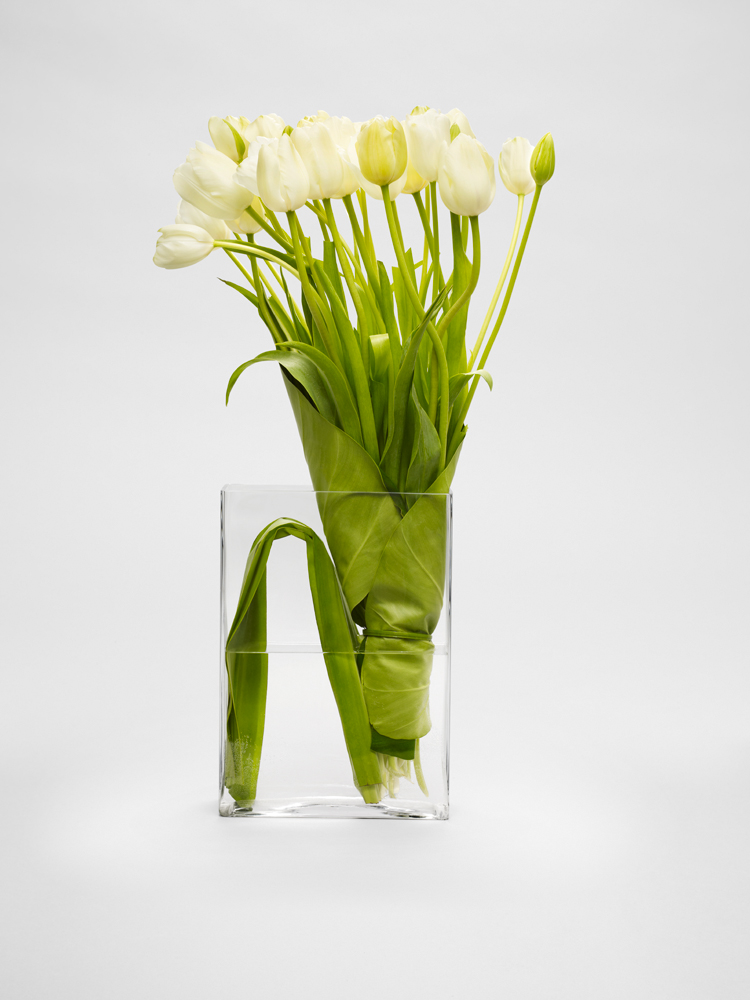 Maureen-French-Tulips