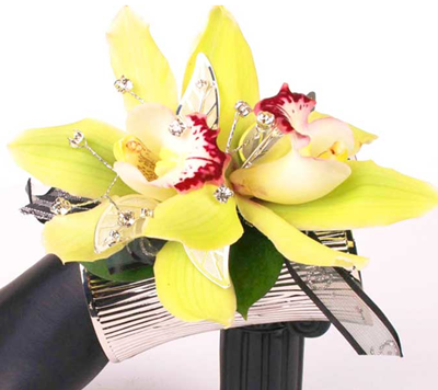 Green cymbidium orchid wrist corsage