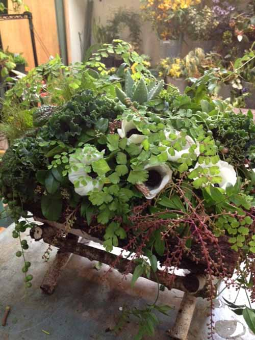 wild green flower arrangement