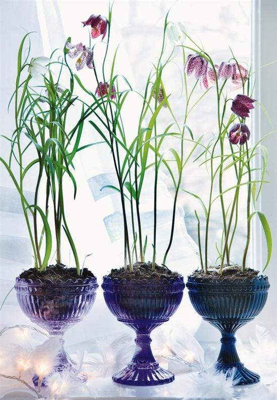fritillaria centerpieces