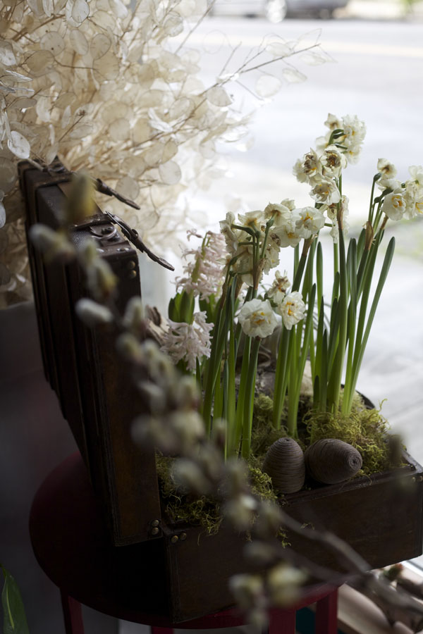 narcissus arrangement