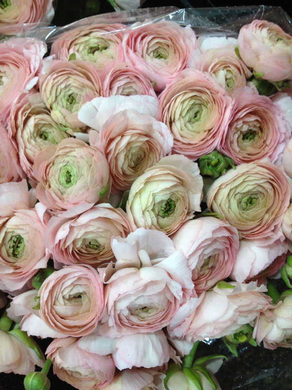 New York Flower District Dutch Flower Line Flirty Fleurs The Florist Blog Inspiration For