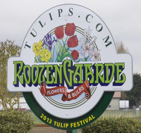 roozengaarde tulip festival
