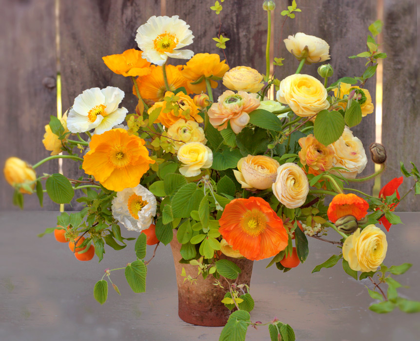 florali-spring2013
