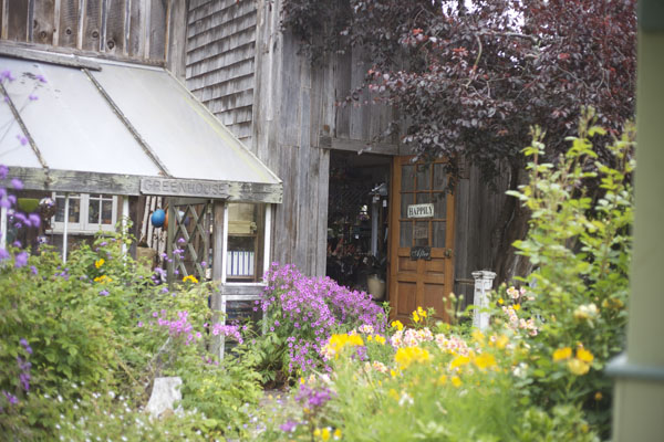 nursery and flower shop