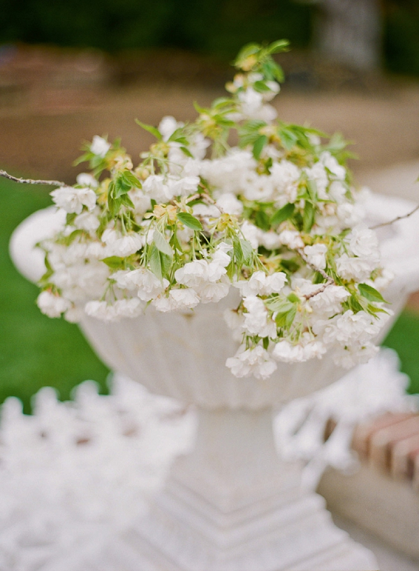 white flowers in a fountain