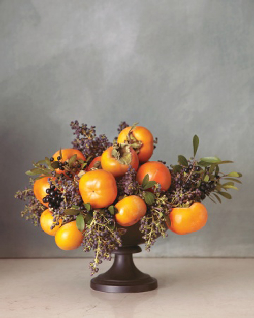 persimmons and privet berries