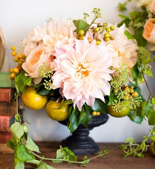 cafe au lait juliet garden roses persimmons