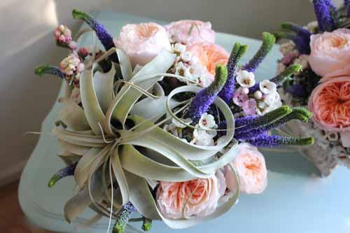 airplant flower arrangement