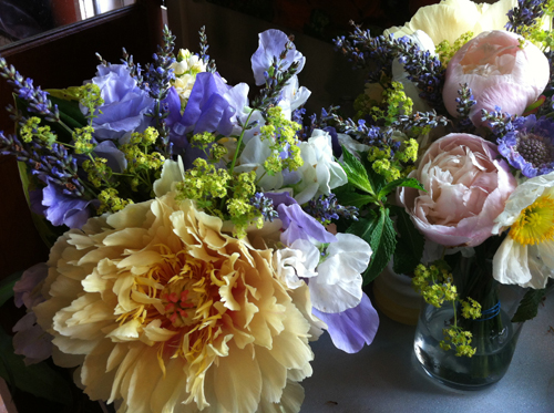 gold tree peony and lavender sweet peas