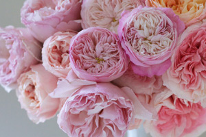 flower design class in Seattle, Washington - designing with garden roses
