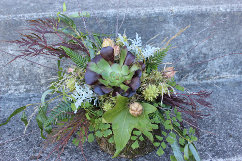all green foliage arrangement