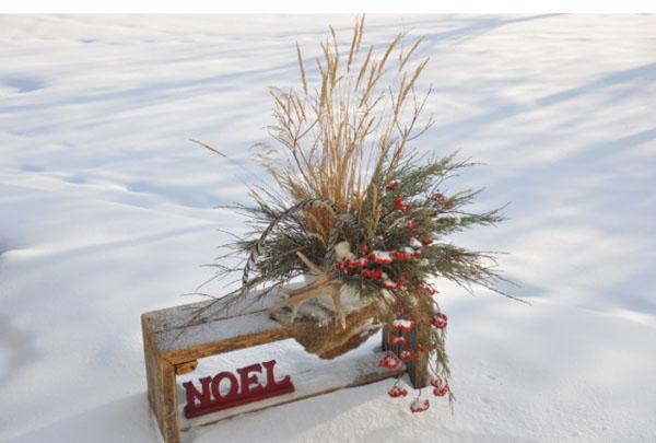 Canadian winter floral arrangement