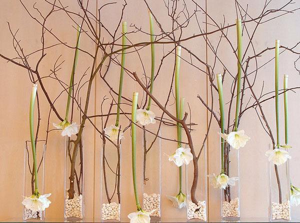 contemporary white amaryllis centerpiece