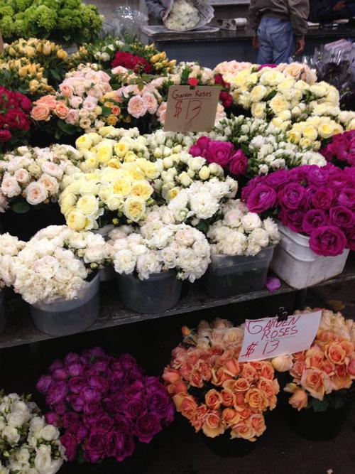 garden roses in buckets