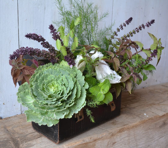 Buckeye Blooms, wood box centerpiece with foliages and succulents