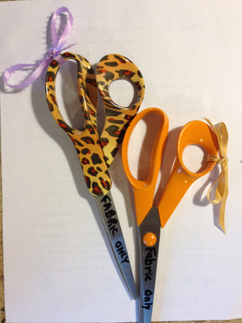 Nancy scissors