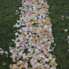 Measuring Aisle Petals