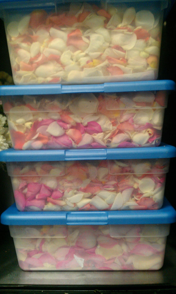 Rose Petals for the aisle in storage boxes