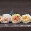 Peach Roses by Flirty Fleurs, Campanella Cinnamon Versilia Juliet Peach Avalanche Tiffany Versilia