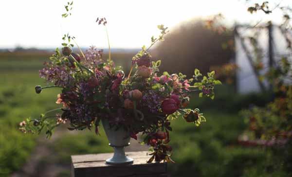 Floret Flowers centerpiece of dark plum flowers