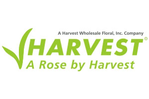 Wholesale Roses NYC at Harvest Roses