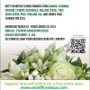 Announcements of Floral Expos, Webinars & Workshops