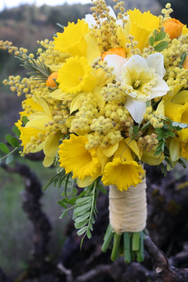 Bella Fiori, Yellow daffodil, ranunculus and acacia bridal bouquet.