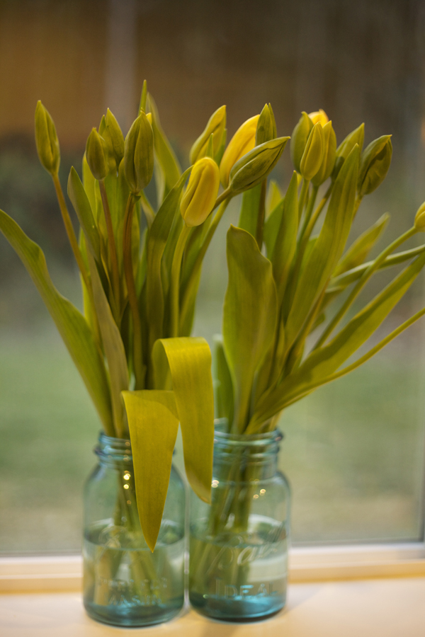 Flirty Fleurs - Yellow tulips in blue jars