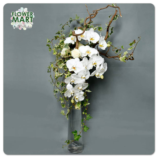 38 Degree Flowers Co, white phalaenopsis orchids, ivy and curly willow in a glass vase