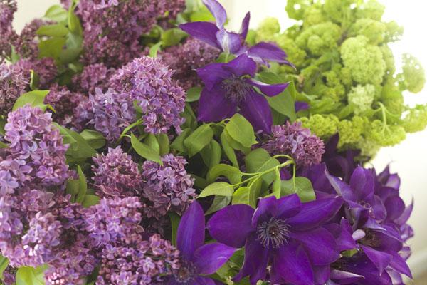 Florabundance Wholesale - Lilacs, Clematis and Viburnum