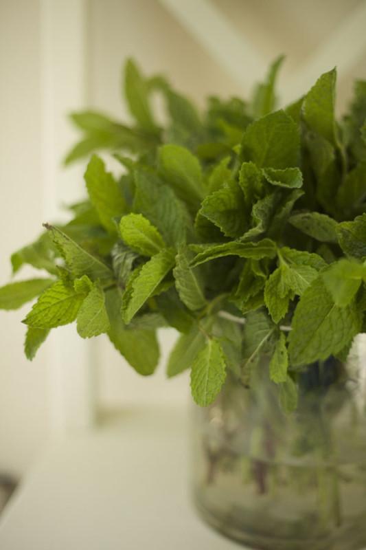 Florabundance - Mint