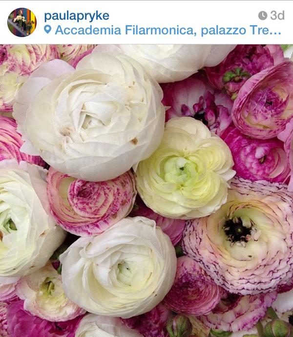 Paula Pryke on Instagram