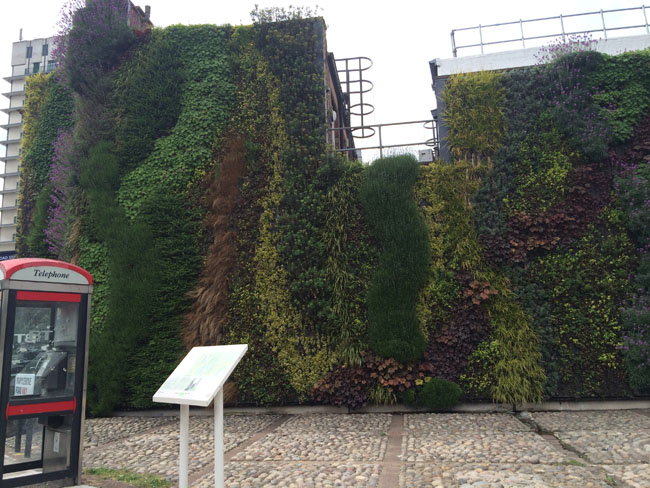 The side of a building in London covered in plants