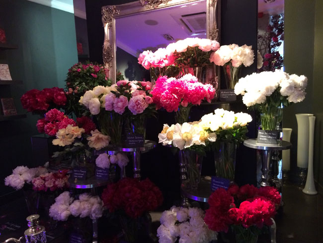 Passion for Peonies at Neill Strain's Flower shop in London.