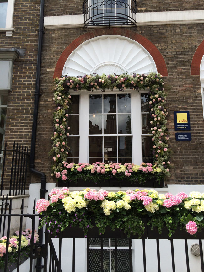 Chelsea In Bloom - flowers outlining a windowsill