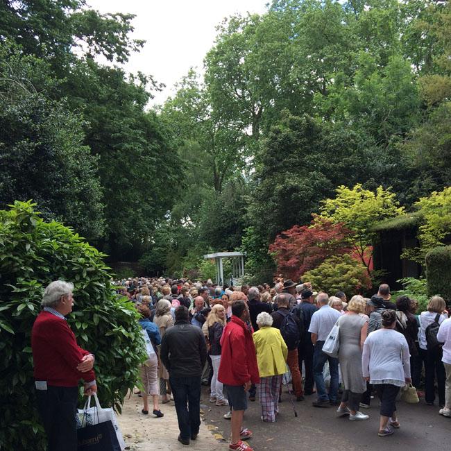 RHS Chelsea Flower Show – The Gardens