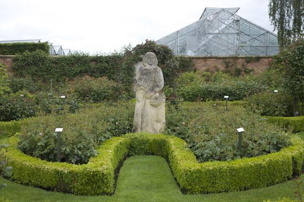 Garden statue seen at David Austin Rose Gardens, England