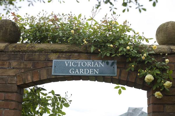 David Austin Victorian Garden